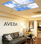 Aveda Bee Hive Salon