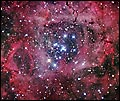 Star Ceiling se-rg026 by Robert Gendler